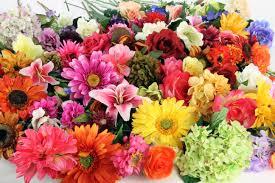 National Floral Design Day National Floral Design Day Happy Days 365