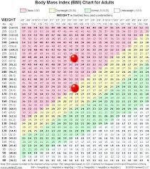 Circumstantial Weight Watchers Ideal Weight Chart Weight