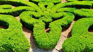 Small Picture 23 Garden Mazes and Labyrinth Designs YouTube