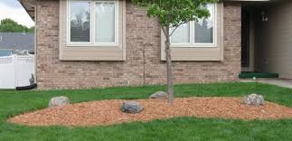 mulch is the term used for a variety of organic s which are applied to your garden as decorative ground cover as a soil improvement and to conserve