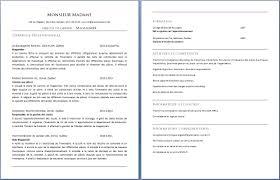 Curriculum Vitae D Un Magasinier Ou Magasini Re Exemple De Cv Info