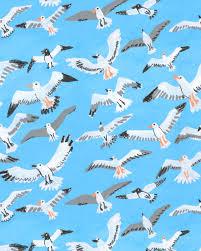 Janna Morton — Seagulls in 2020   Illustration, Drawings, Instagram