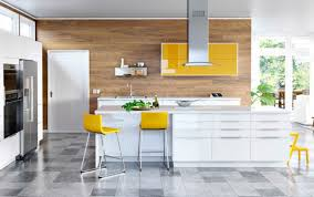 Ikea Kitchen Ideas Custom Inspiration Design