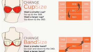 Find Your Perfect Bra Quickly By Knowing Your Sister Bra Sizes