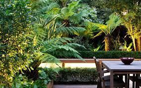 tropical garden designs modern exotic