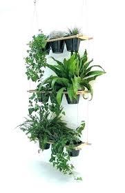 indoor hanging plant holder indoor hanging plants hanging plant pots indoor indoor hanging plant stand terrarium indoor hanging plant holder