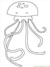 Small Picture Ocean Jellyfish Coloring Page Free Jellyfish Coloring Pages