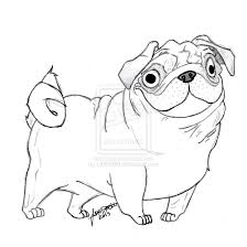fabulous cute pug puppy coloring pages with within studynow me