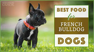 Canidae Dog Food Feeding Chart 10 Best Healthiest Dog Foods For French Bulldogs In 2019