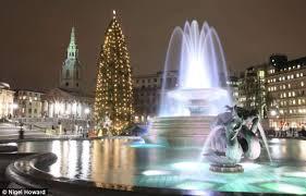 Trafalgar Square: Spectacular tree will use 600 bulbs | Daily Mail ...