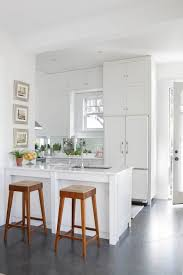 small kitchen refrigerator. Concealed Refrigerator Small Kitchen