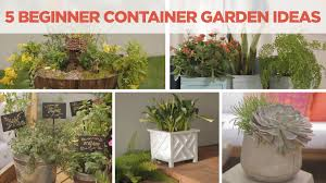 container gardening for beginners. Container Gardening For Beginners R