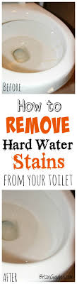 Best 25+ Water stains ideas on Pinterest | Hard water remover ...
