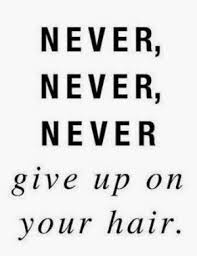 Beautiful Hair Quotes Best of 24 Quotes To Help When Frustrated With Your Beautiful Natural Hair