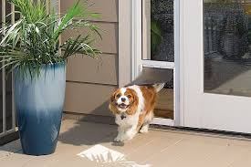 l dog door dog doors pet doors extra large dog doors for sliding glass doors
