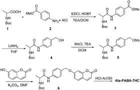 Synthesis of the probe Ala PABA  HC  RSC Publishing   Royal Society of Chemistry