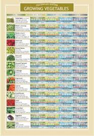 Vegetable Growing Chart Growing Vegetables Two Sided Color Informational Chart