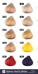 Haircolor And Hair Dye Colours Chart Colour Numbers 11