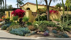 Small Picture Garden Landscape Designer San Diego Landscaping with Succulents