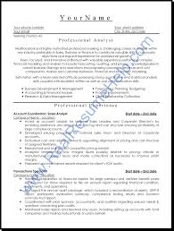 Professional Resume Template Experience Resumes