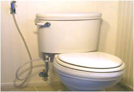 While toilet seat bidets have been the most popular choice among people  looking to install these toilet paper replacements handheld bidets have  been