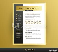 Professional Cv Resume Template In Black And Gold Colors
