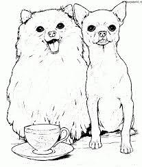 Hond Kleurplaat Kleurplaten 635 Kleurplaat Kleurennet