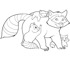 Small Picture Free Printable Raccoon Coloring Pages For Kids
