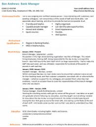 Bank Manager Cv Example Work Job Career Cv Examples Job
