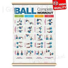 Chest Chart Gym Chest Workout Professional Gym Fitness Wall Chart Poster