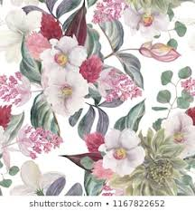 flowers pictures to print. Brilliant Pictures Seamless Hand Illustrated Floral Pattern With Pink Medinilla Magnifica  Watercolor Botanical Background To Flowers Pictures Print N