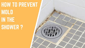 mold has the potential to cause you many serious health problems it also has the potential to grow in many areas that you come into contact with