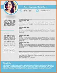 Top Resume Formats Delectable 48 Best Resumes Formats Wine Albania