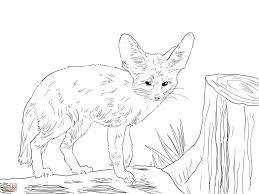 Coloring Page Baby Fox Pages Lovely Anime Drawings Of For At Star
