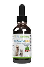 Discover How Chinese Veterinary Medicine Treats Pet Allergies | Pet ...