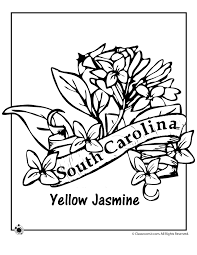 Small Picture South Carolina State Flower Coloring Page Woo Jr Kids Activities