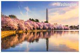 Washington Dc Detailed Climate Information And Monthly