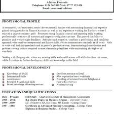Sample Profile Statement For Resumes Sample Profile Statements For Resumes Resume Example Resume Examples