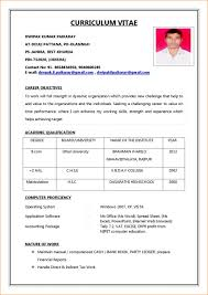Professional Resume Format Gorgeous Resume Format For Job Sample Of Biodata For Job Application With