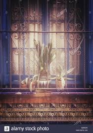 Fenster Mit Latest Fenster Mit Festem With Fenster Mit Perfect