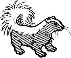 Small Picture Striped Skunk Coloring Page Striped Skunk Coloring Page Color Luna
