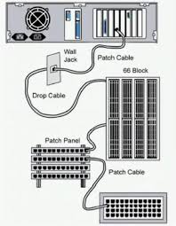 computers networking operating systems wiring distribution components