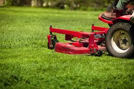 Biggest Lawn Care Mistake Is Cutting Grass Too Short