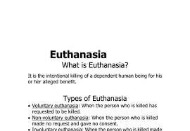 euthanasia argumentative essay examples dissertation conclusion  euthanasia argumentative essay examples