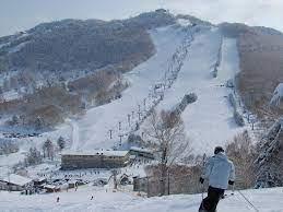 志賀 高原 スキー 場 天気