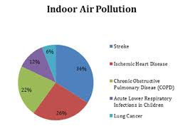 feature articles air pollution caused deaths breakdown by disease