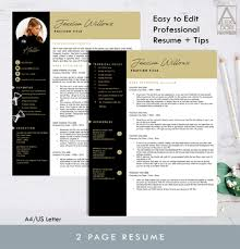 How Many Pages Is A Modern Resume Resume Template With Picture Modern Resume Cv Job Cvs Job Templates Pages