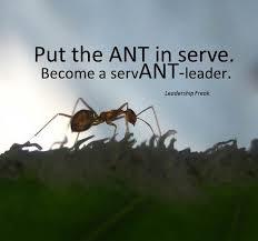 7 Powerful Qualities of Servant-Leaders | Leadership Freak