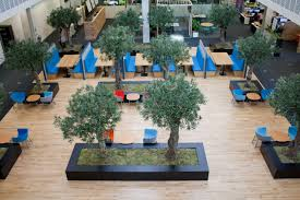 case study sky central indoor garden design ltd