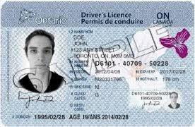 Got Just Driver's I Snowbird Licence My Thirties Millennial - In